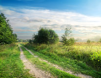 Country road and field Royalty Free Stock Images
