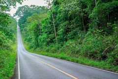Country Road, Field, Land, Lawn, Meadow. The road on the Khao Yai National Park in Thailand.Beautiful road Stock Photo