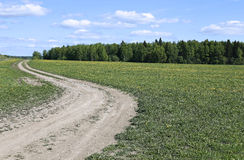 Country road in the field Stock Photography