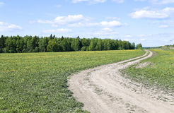Country road in the field Royalty Free Stock Photography