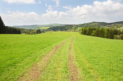 Country road in the field Royalty Free Stock Image