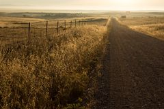 Country road in fields