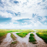 Country road in the fields Royalty Free Stock Photo