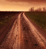 Country road through the fields Royalty Free Stock Photos