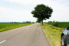 Country road in fields to horizon Stock Images