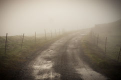Country road with fog Royalty Free Stock Photo