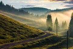 Country road through foggy forest in mountains Royalty Free Stock Photography