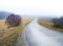 Country road in foggy landscape Stock Images