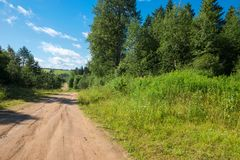 Country road through the forest Stock Images