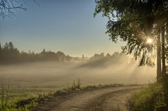 Country road in forest, hdr Stock Photography