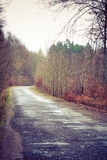Country road in the forest on misty day. Fall landscape. Country asphalt road in the autumn forest. Misty hazy autumnal day Stock Image