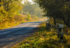 Country road through forest in morning haze Royalty Free Stock Photography