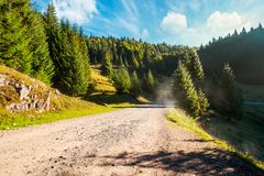 Country road through forested area in mountain. Beautiful weather in nature at sunrise royalty free stock image