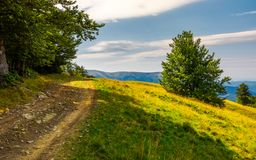Country road through forested hillside. Lovely summer scenery of Carpathian mountains. Apetska mountain in the distance Stock Photography