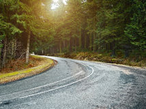 Country road into forrest. Country road into a forrest at sunset, cloudy backlite shot. perfect for car and motorcycle copy space Royalty Free Stock Photography