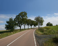 Country road in the german Harz mountains Stock Images