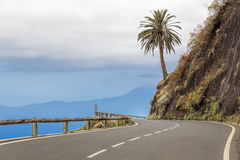 Country road on Gomera island, Spain. Country road with palm tree on the side on Gomera island, Spain. Gomera is one of the Canary Islands off the coast of stock photos