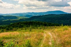 Country road through grassy hillside. Lovely summer scenery of Carpathian mountains Stock Image