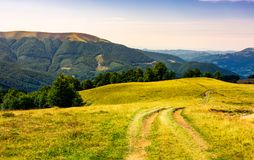 Country road through grassy hillside. Lovely summer scenery of Carpathian mountains. Apetska mountain in the distance stock photos