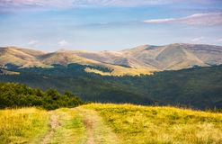 Country road through grassy hillside. Lovely summer scenery of Carpathian mountains. Svydovets mountain ridge in the distance Stock Images