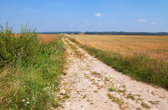Country road. Royalty Free Stock Photo
