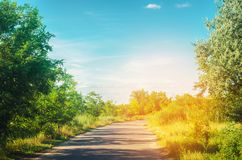 A country road with green trees and the blue sky near the forest on a bright summer day. countryside. nature. beautiful landscape Stock Photos
