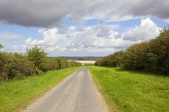 Country road and hedgerows Stock Photo