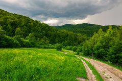Country road hides in the woods. Lovely countryside scenery in mountains Royalty Free Stock Photo