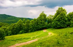 Country road hides in the woods. Lovely countryside scenery in mountains Royalty Free Stock Images