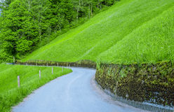 Country road through hillside and forest Royalty Free Stock Image
