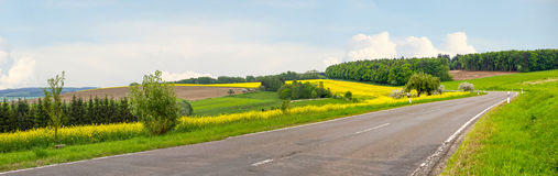Country road through hilly landscape and blooming rape fields Royalty Free Stock Image