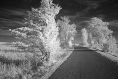 Country road in infrared black and white Stock Photography