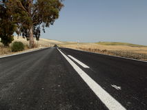 Country Road, Jerez, Andalusia, Spain Stock Photo