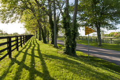 Country road in Kentucky at spring Royalty Free Stock Photo
