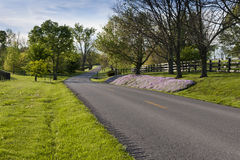 Country road in Kentucky at spring Stock Image