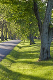 Country road in Kentucky at spring Stock Photos
