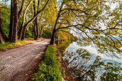 Country Road by the Lake... Beautiful Magical Nature Autumn Sce. Ne royalty free stock photo