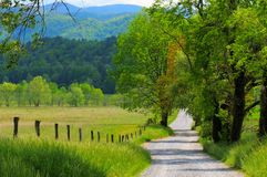 Country road landscape stock image