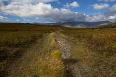 Country road leading into the mountains. Autumn in the mountains. Polar Urals. Russia Stock Images