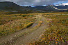 Country road leading into the mountains. Autumn in the mountains. Polar Urals. Russia Stock Photos