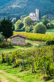 Country road leading through vineyards to the monastery Royalty Free Stock Photos