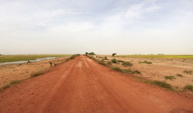 Country road in Mali Stock Photography