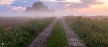Country Road. Meadow in Poland, near Szczecin Royalty Free Stock Photo