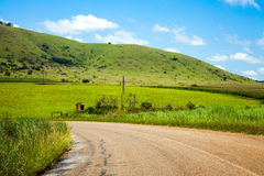 Country road. Through meadows somewhere in South Africa Royalty Free Stock Image