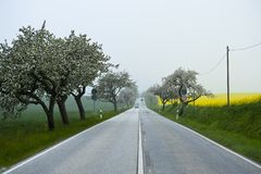 Country Road in Mecklenburg Stock Photography
