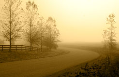 Country road in morning haze. Stock Photos