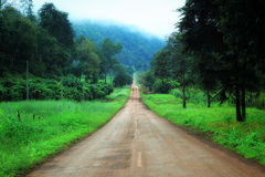Country road in the morning. With a mountain background Royalty Free Stock Photography