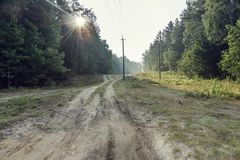 Country road morning Royalty Free Stock Photography
