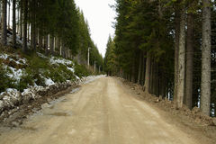 Country road through mountain forest Royalty Free Stock Photography