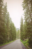 country road at the mountain Royalty Free Stock Photography